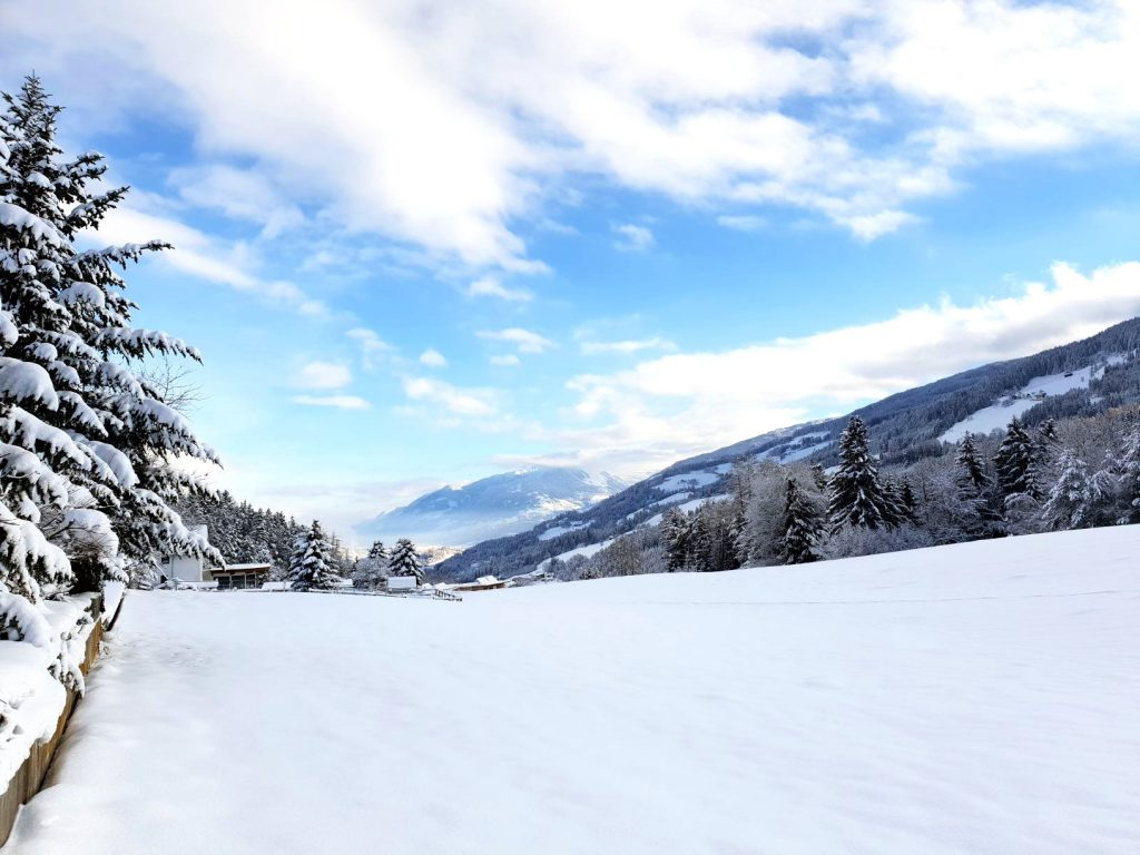 Snow in Austria for Christmas.
