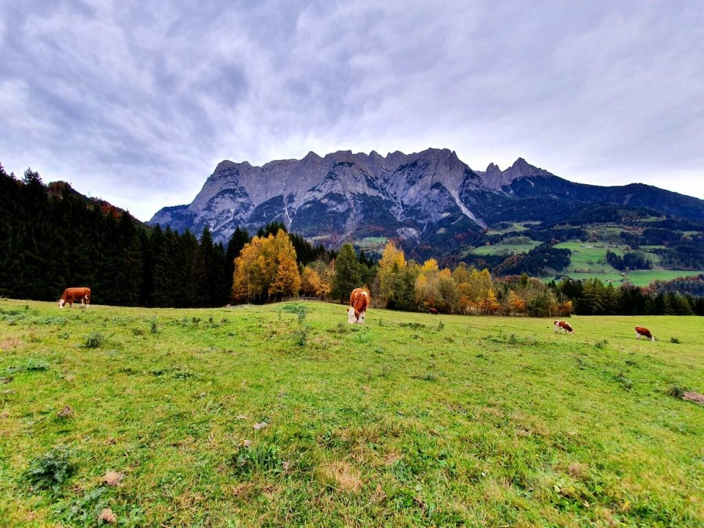Views from the Sound of Music Meadow in Werfen.